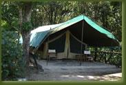 Kenia Masai Mara - Governors Camp